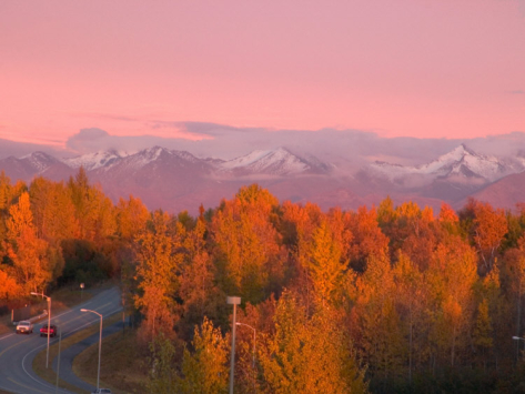 savanah-stewart-kincaid-park-in-autumn-anchorage-alaska-usa_i-G-30-3066-3CIDF00Z